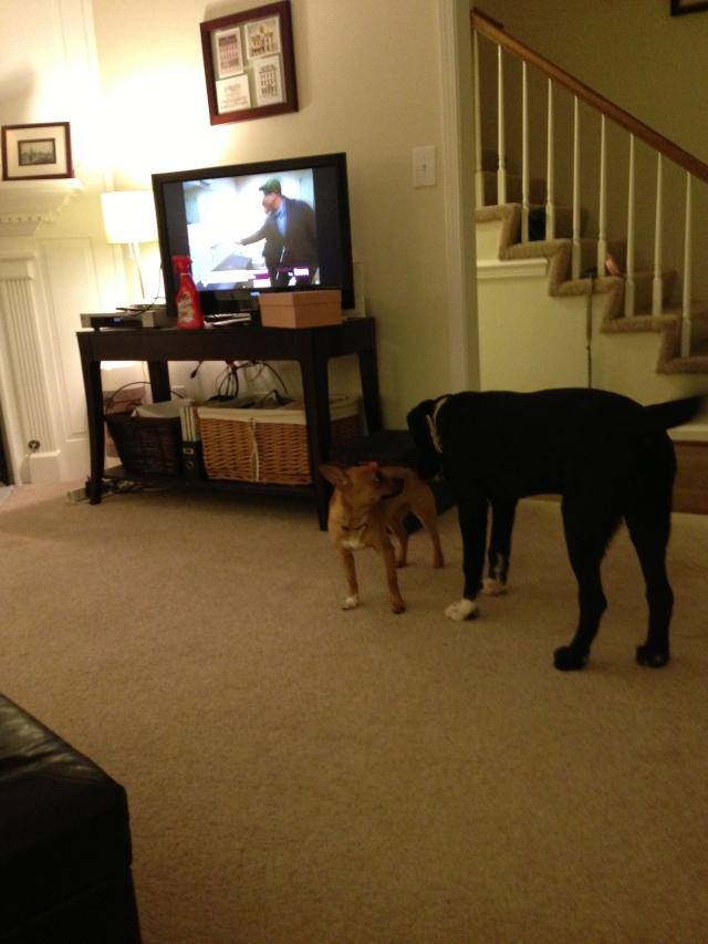 When Sookie met Bentley...