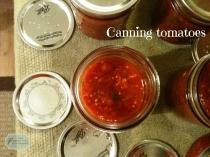 CanningTomatoes