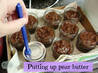 MakingPearButter